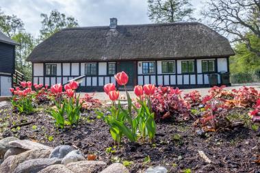 Ferienhaus 20131 - Dänemark