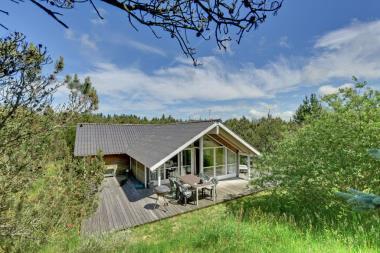 Ferienhaus 3169 - Dänemark