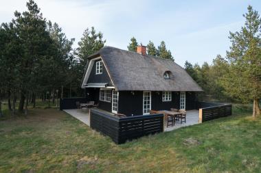 Ferienhaus 3255 - Dänemark